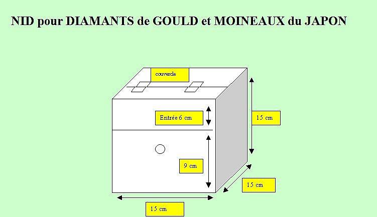 Nid pour diamant de gould for Fabrication cage oiseaux exterieur