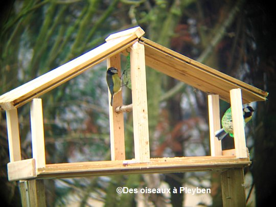 les mangeoires pour oiseaux du jardin. Black Bedroom Furniture Sets. Home Design Ideas